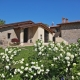 BORGO PIANELLO Holiday Homes & Winery - Lizzano in Belvedere (BO)